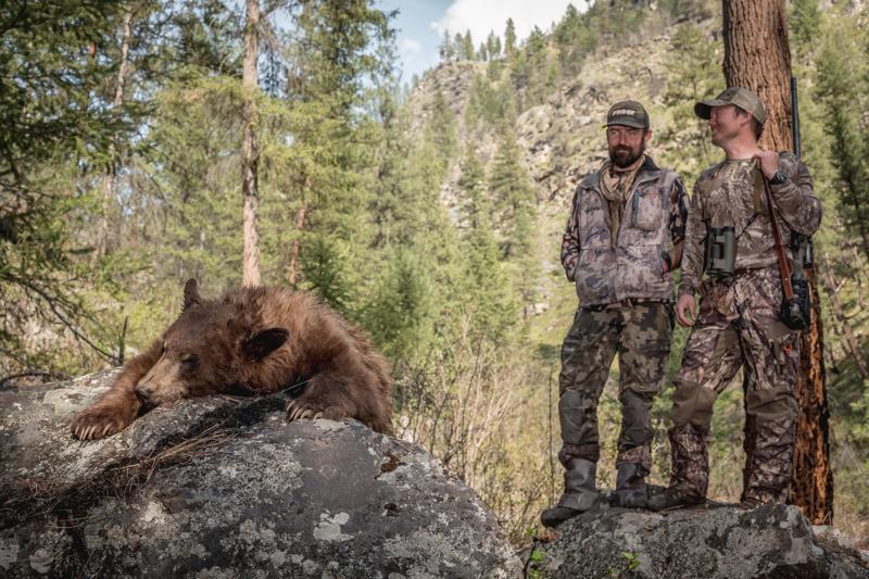 Caccia all'orso nero