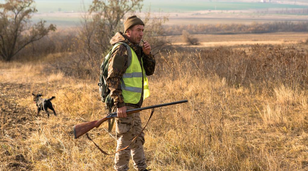 cacciatore con cane, fucile e veste alta visibilità: legge sulla caccia, la proposta di riforma di Cia-Agricoltori