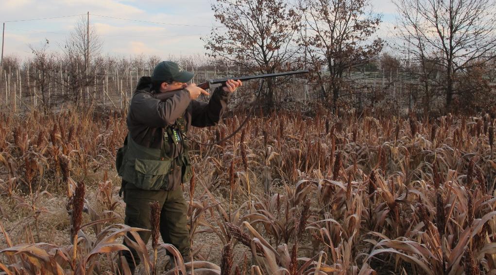 Ufficiale il calendario venatorio del Piemonte: cacciatore di profilo con fucile imbracciato