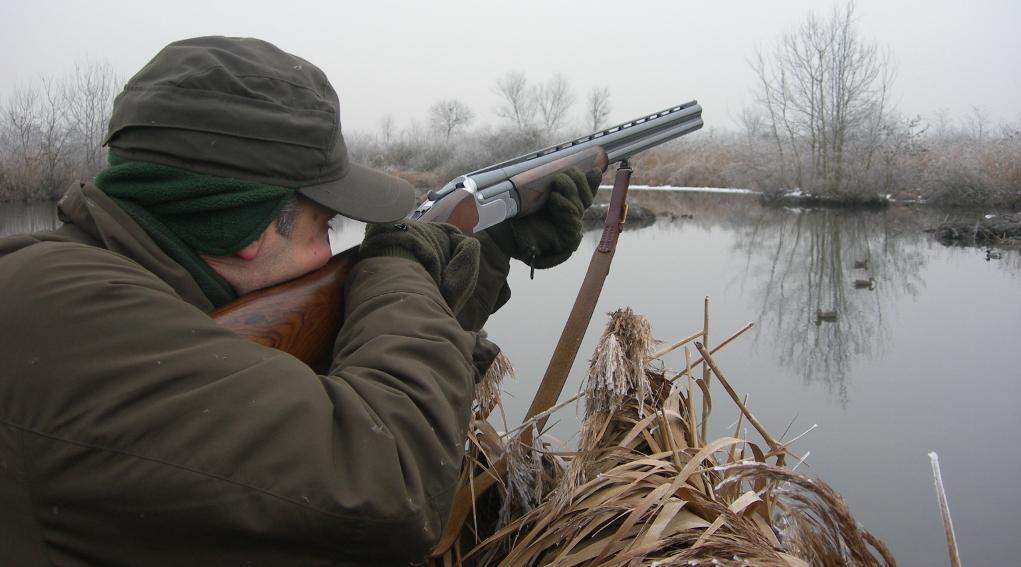 caccia agli acquatici con richiami negli appostamenti