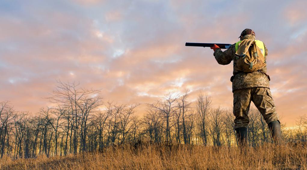 cacciatore che imbraccia il fucile al tramonto: commissioni di lavoro Federcaccia