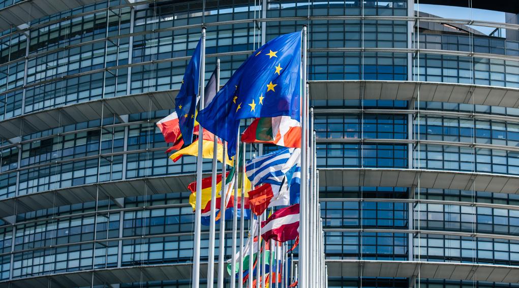 bandiere dei Paesi membri davanti al nuovo parlamento europeo