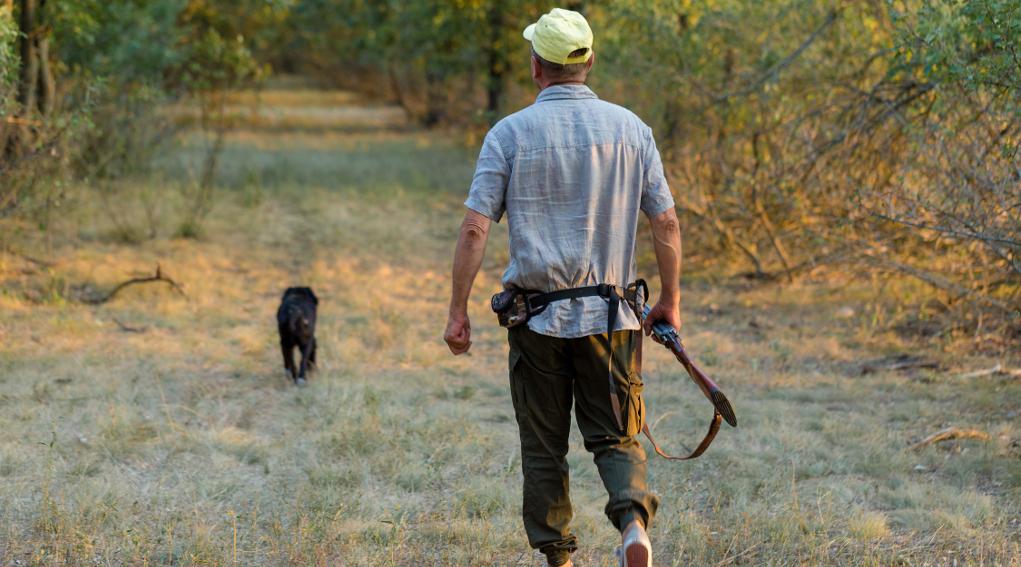 Incontro tra Federcaccia e Beretta: cacciatore di spalle con fucile in mano e cappello in testa, cane davanti