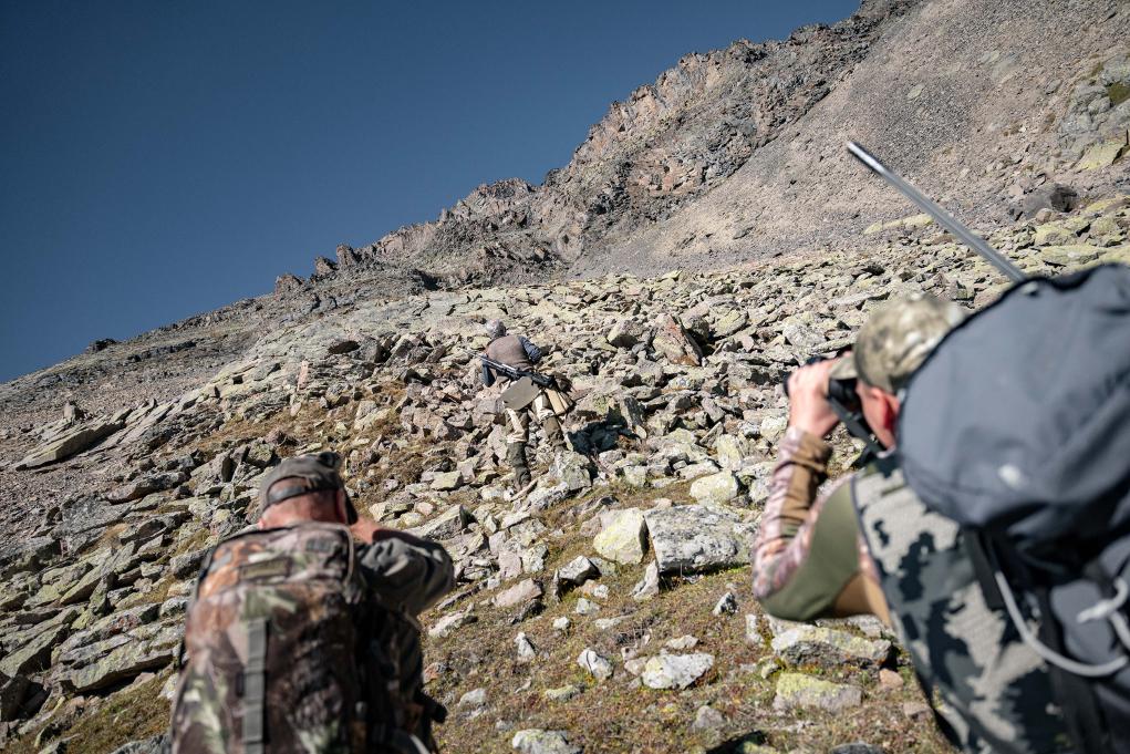 caccia all'estero, alla ricerca del tur del medio caucaso