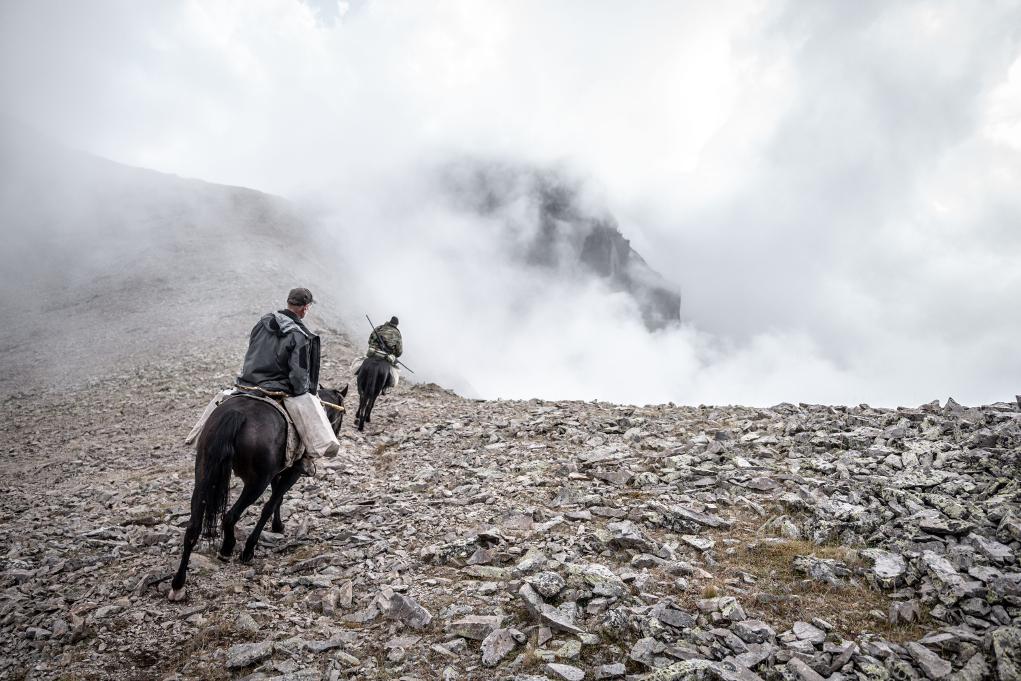 caccia in montagna a cavallo