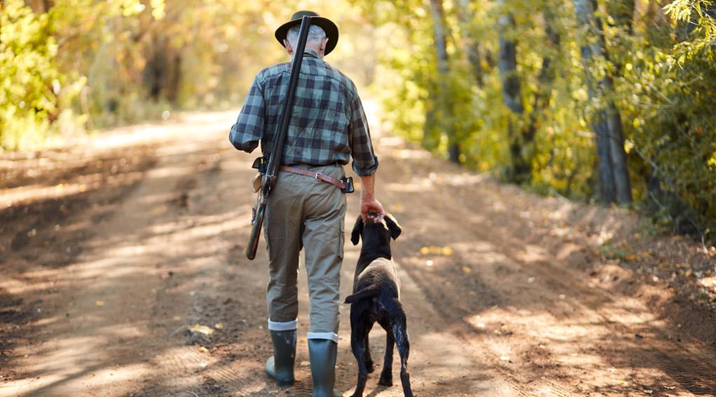 fiera di caccia: cacciatore di spalle con fucile a tracolla e cane al suo fianco
