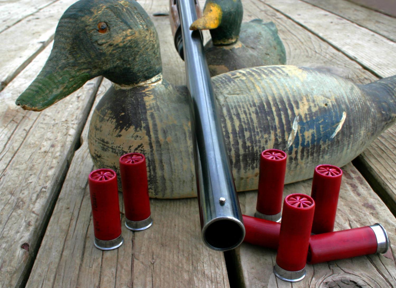 gioco per caccia agli acquatici con munizioni in piombo
