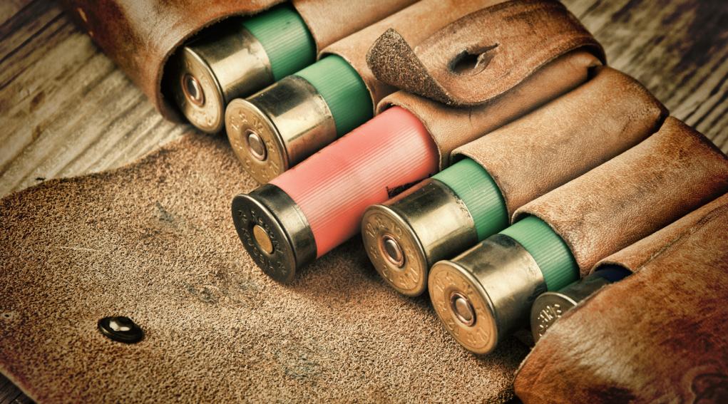 balistica delle munizioni spezzate: cartucce nel fodero