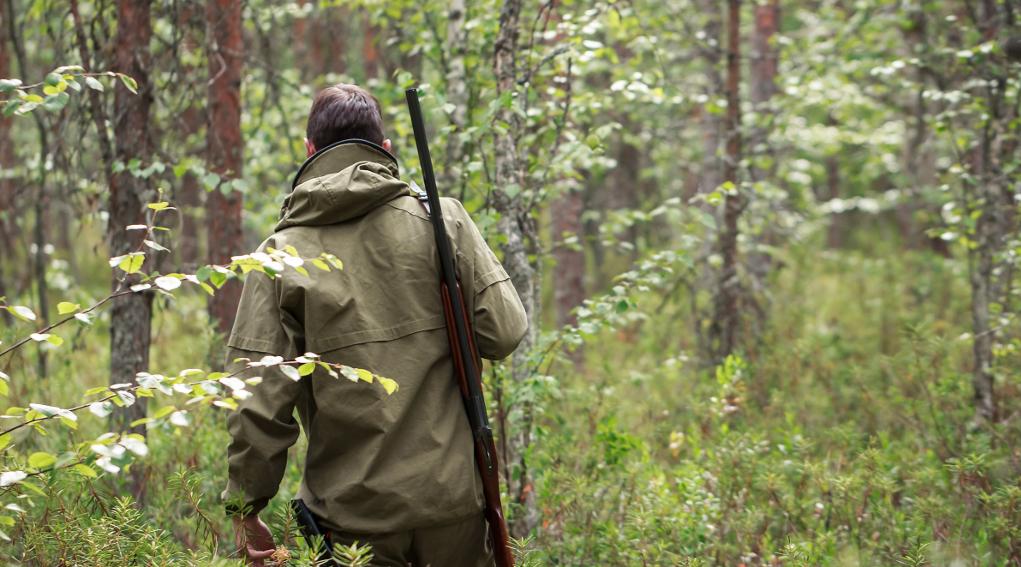 Osservatorio degli habitat naturali in Lombardia ecco le nomine: cacciatore di spalle nel bosco