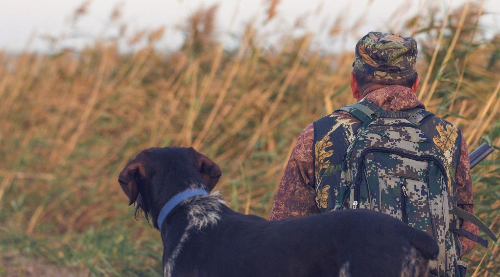 Piano faunistico venatorio delle Marche: cacciatore di spalle con cane
