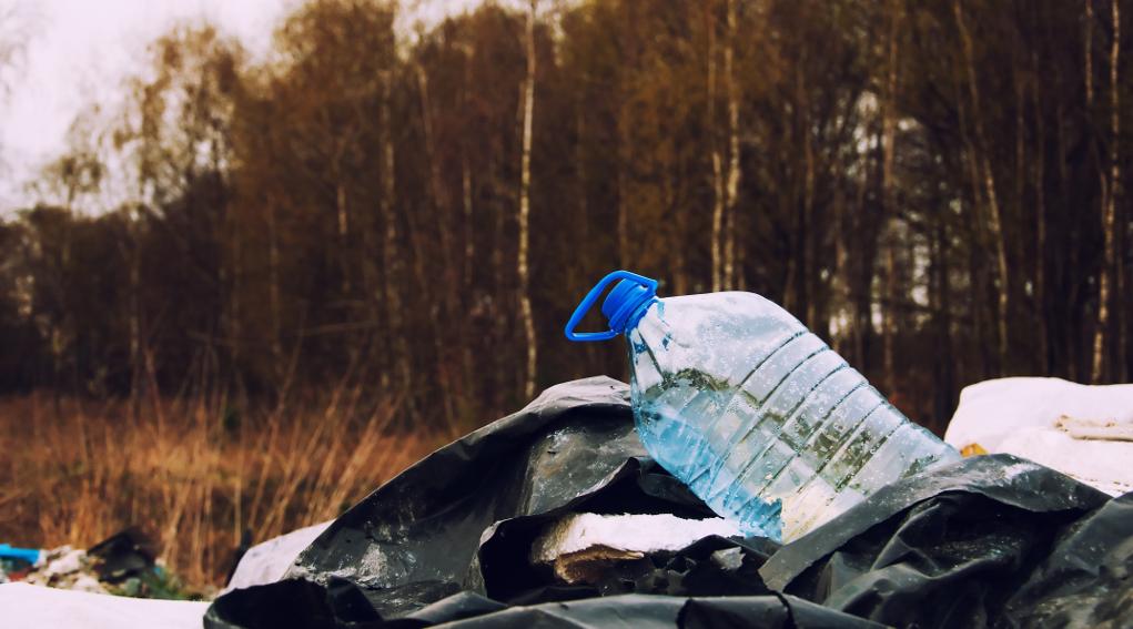 Tutela dell'ambiente: bottiglia di plastica e spazzatura in una foresta
