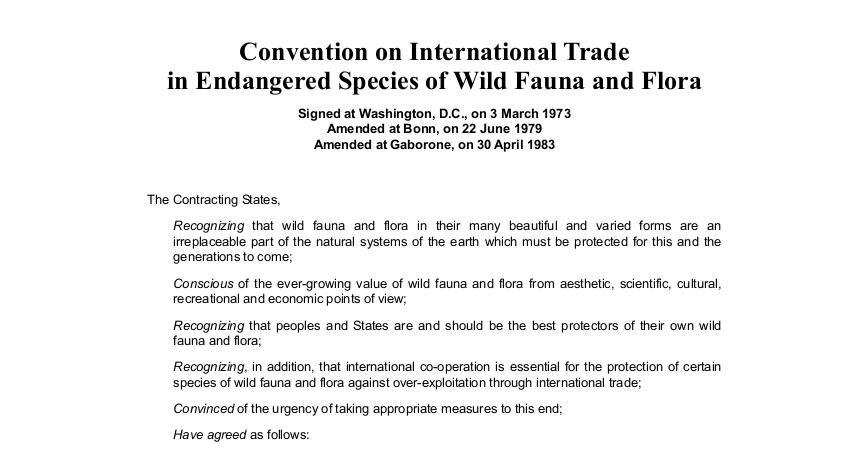 Licenza Cites per il commercio internazionale di flora e fauna selvatica la Guardia di Finanza sulla proroga