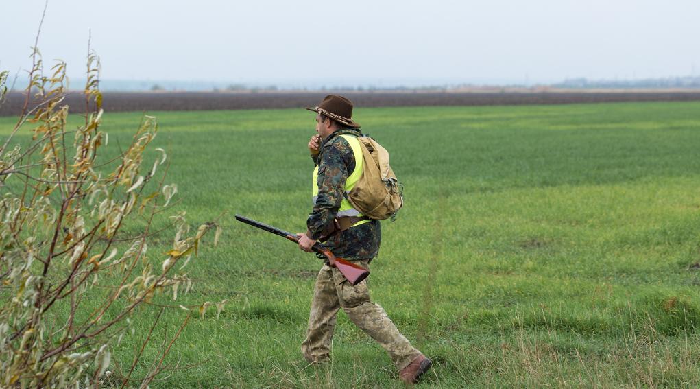 Calendario venatorio del Veneto: cacciatore con gilet alta visibilità e fucile in mano fischia a cane