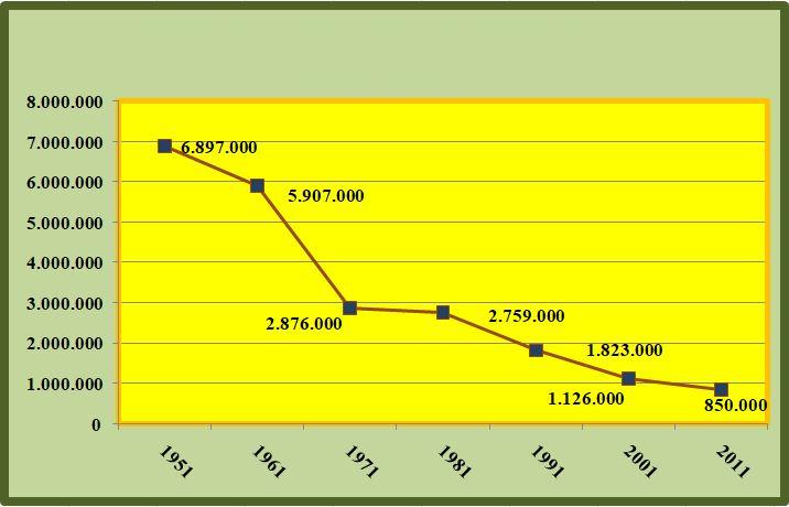 andamento del numero degli occupato in agricoltura