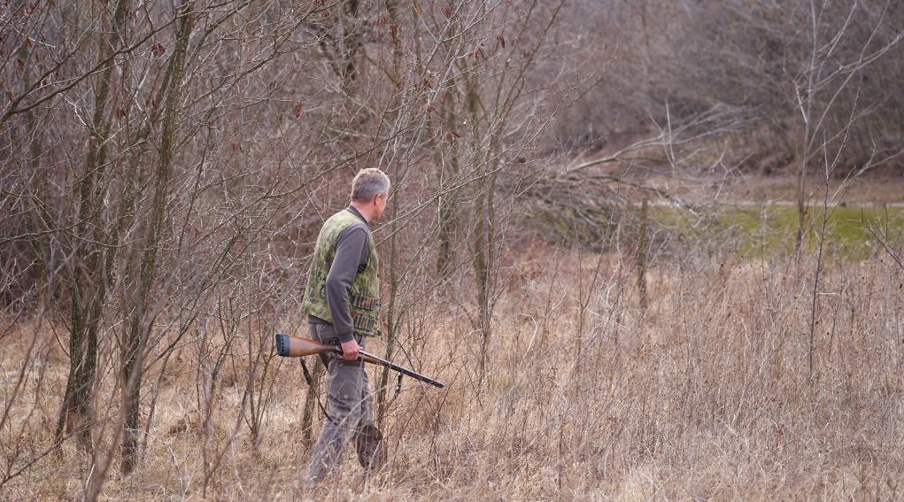 rinnovare il porto d'armi non ancora scaduto: cacciatore nel bosco