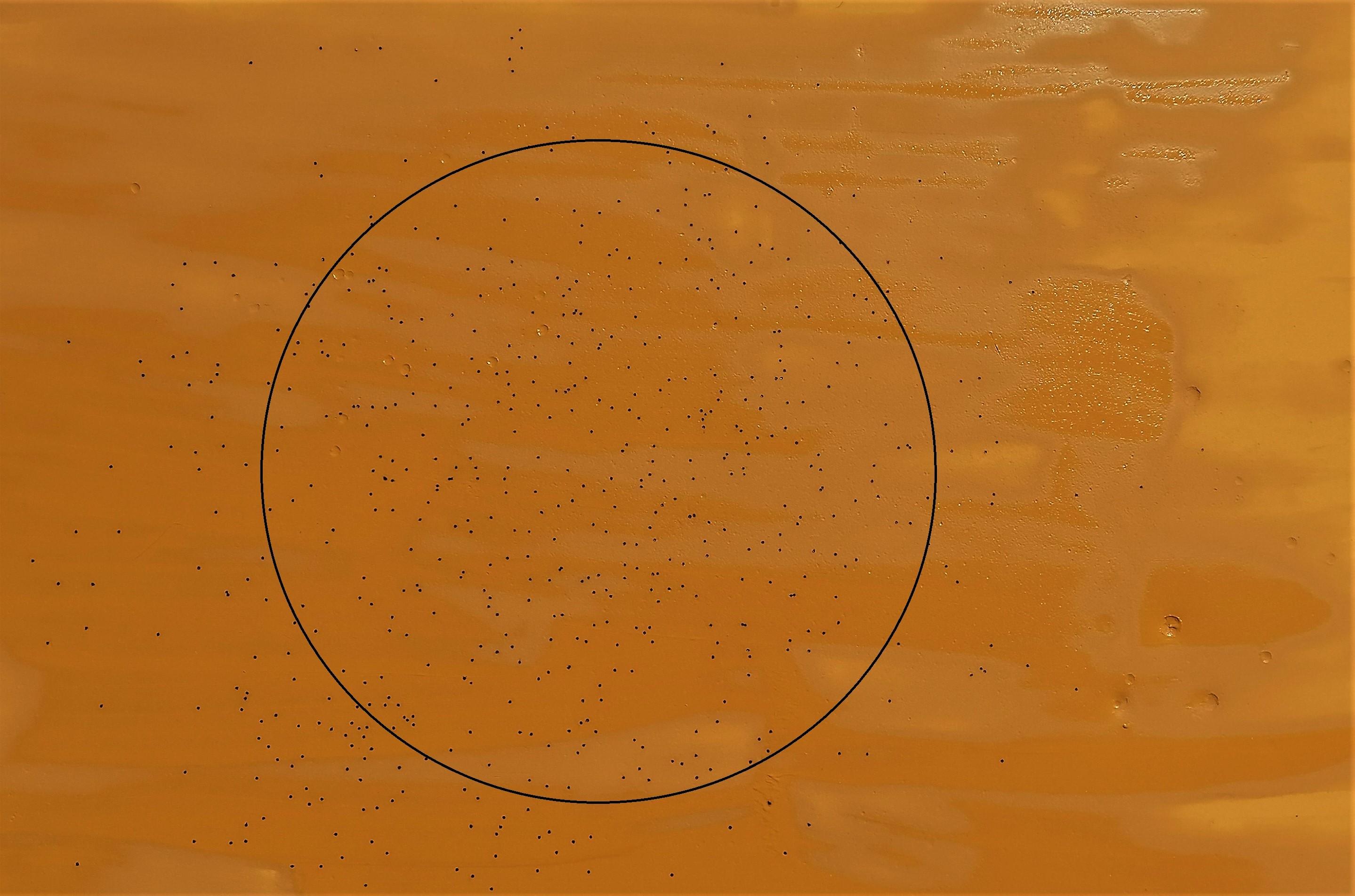 prova di rosata della ricarica calibro 20 in acciaio a 23 metri