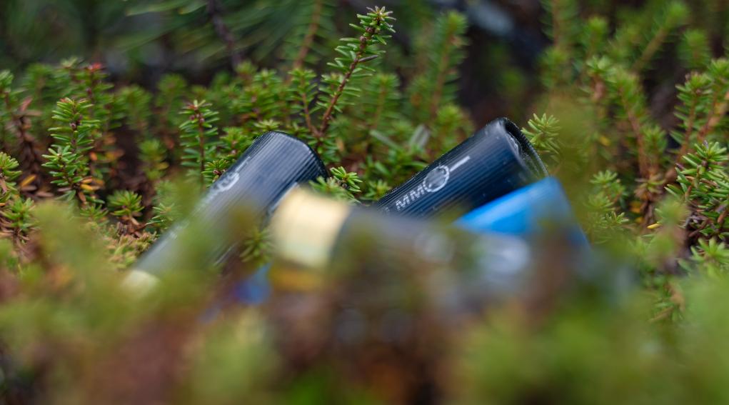 munizioni in piombo nelle zone umide