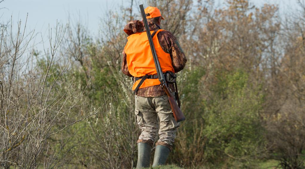 calendario venatorio del Lazio: cacciatore in alta visibilità con fucile a tracolla