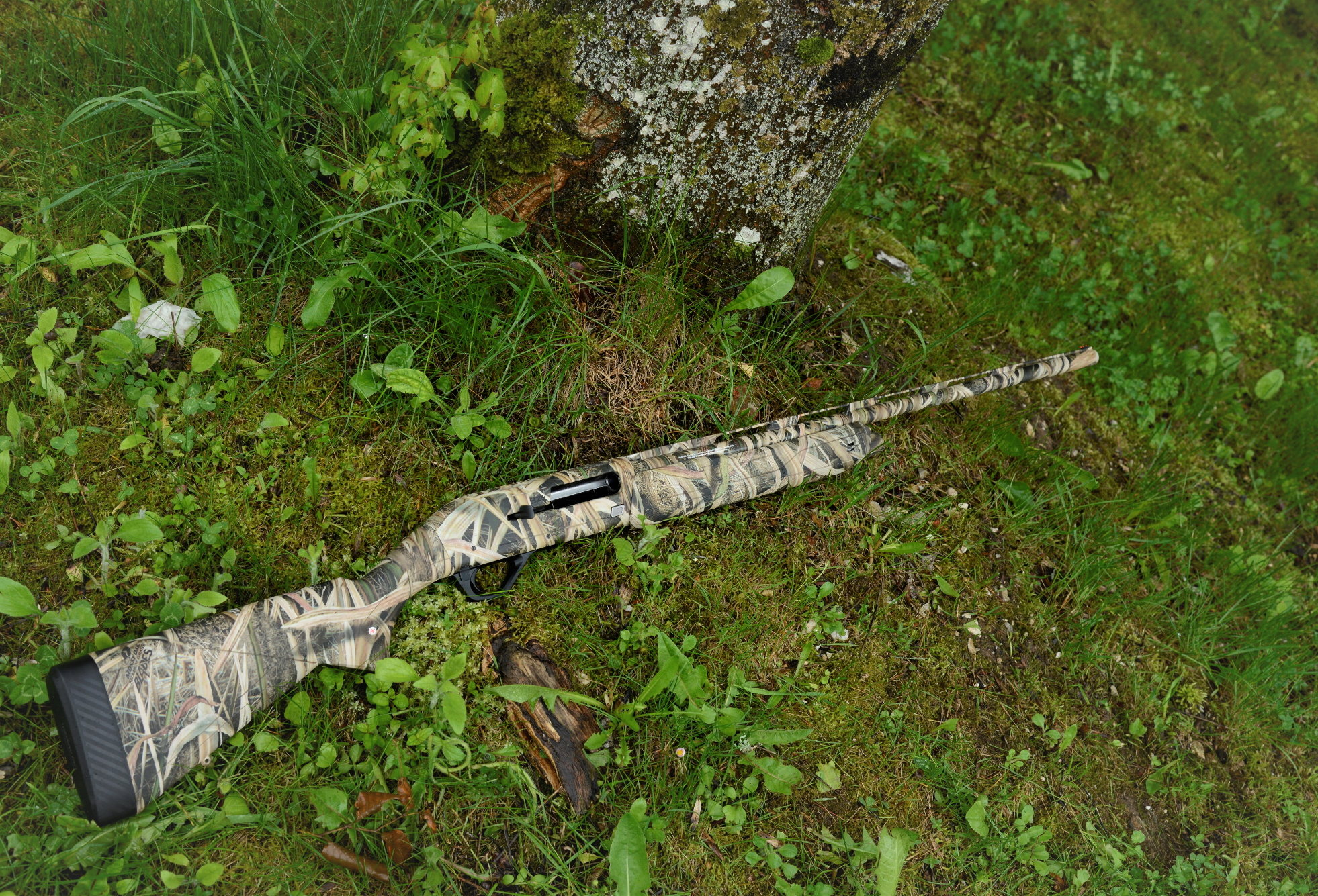 Winchester SX4 Waterfowl calibro 20 il test