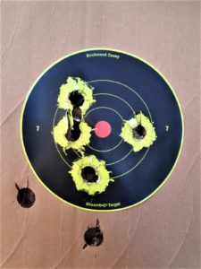 rosata ottenuta sparando le munizioni pegoraro cinghiale in un fucile semiautomatico beretta a300 calibro 12