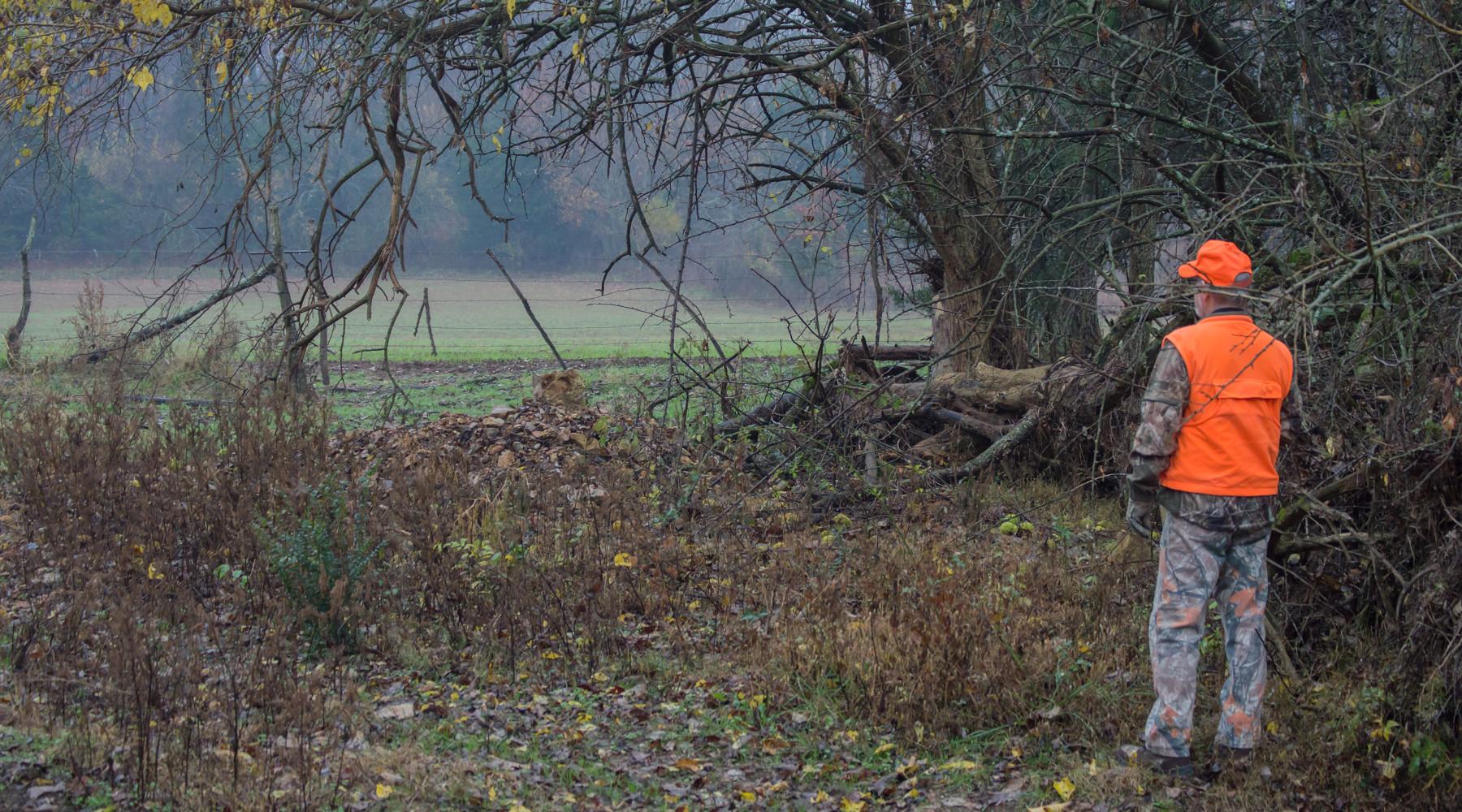 caccia nei fondi privati: cacciatore vestito di arancione, nel bosco