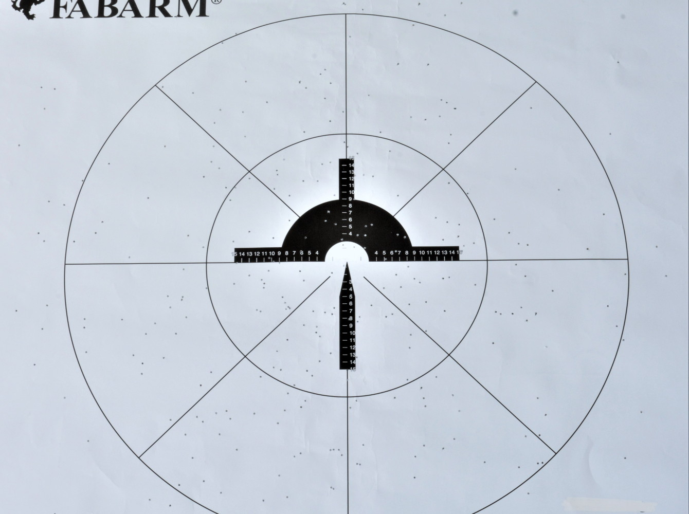 baschieri pellagri, prova di rosata a 35 metri col fucile fabarm xlr columba palumbus