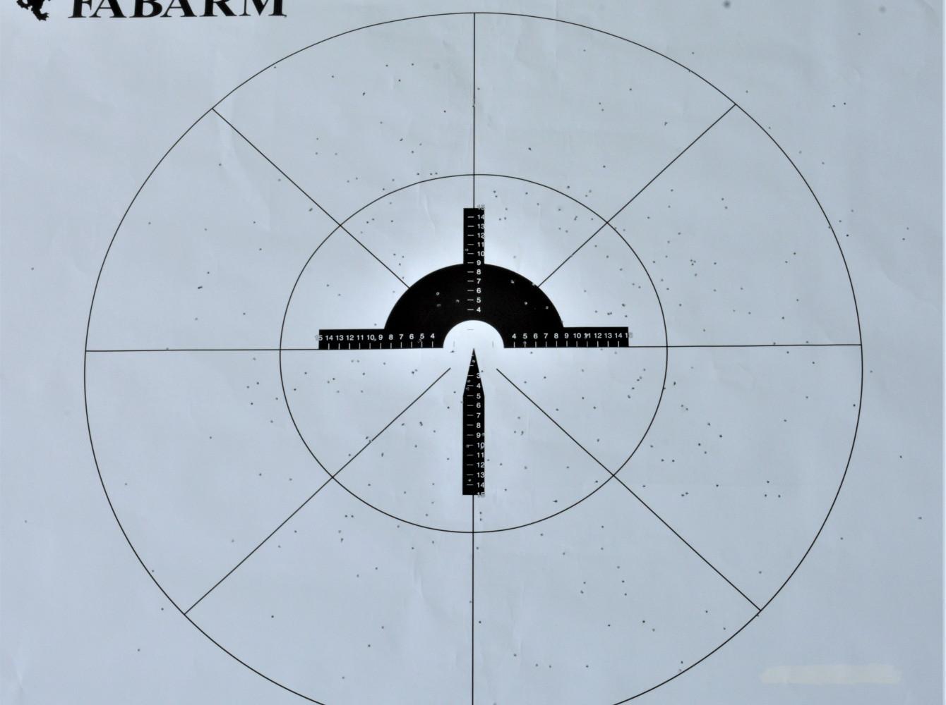 pegoraro, prova di rosata a 35 metri col fucile fabarm xlr columba palumbus