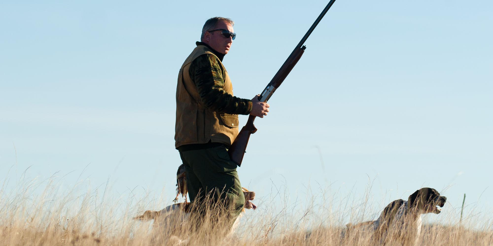 fattori d'impatto sulla fauna selvatica: cacciatore con cane e con fucile