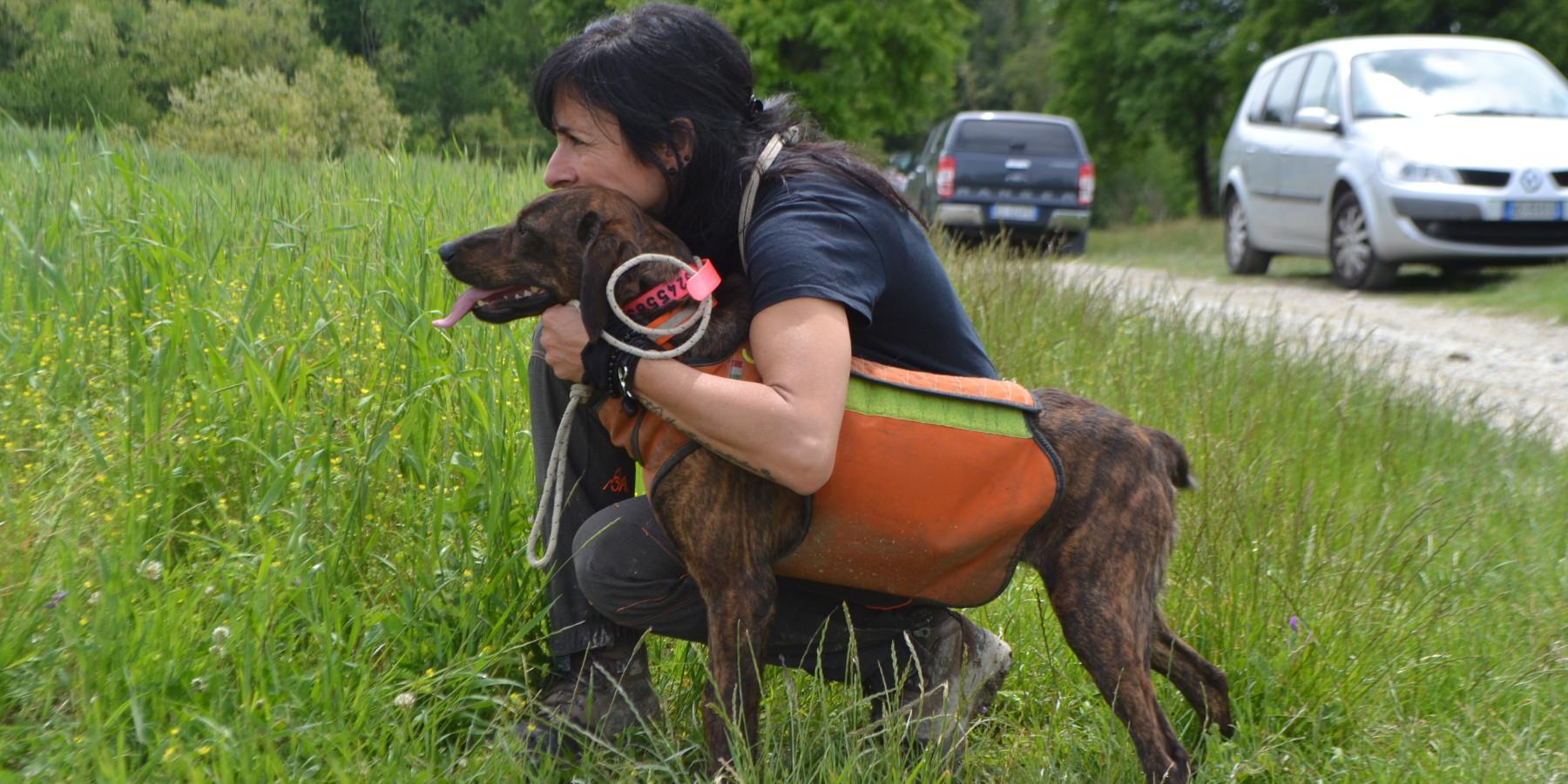 L'invecchiamento del cane da seguita: in foto un soggetto di Gianni Perotti